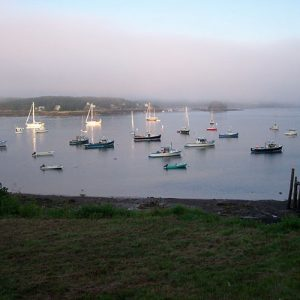 Burnt Coat Harbor in a light fog